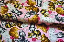 ROBERT KAUFMAN KATZEN KATZE KITTY CAT USA Designerstoff 0,5m x 1,10m ROSA