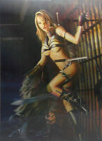 3d Lenticular Poster -warrior Girls With Knives -12x16 Print- 3 Different Images