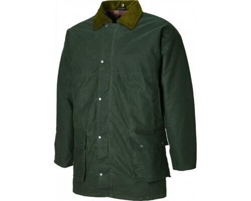 giacca Offerta speciale pelle con di Westfield Verde Dickies in bottiglia donna da cappuccio fUwEq