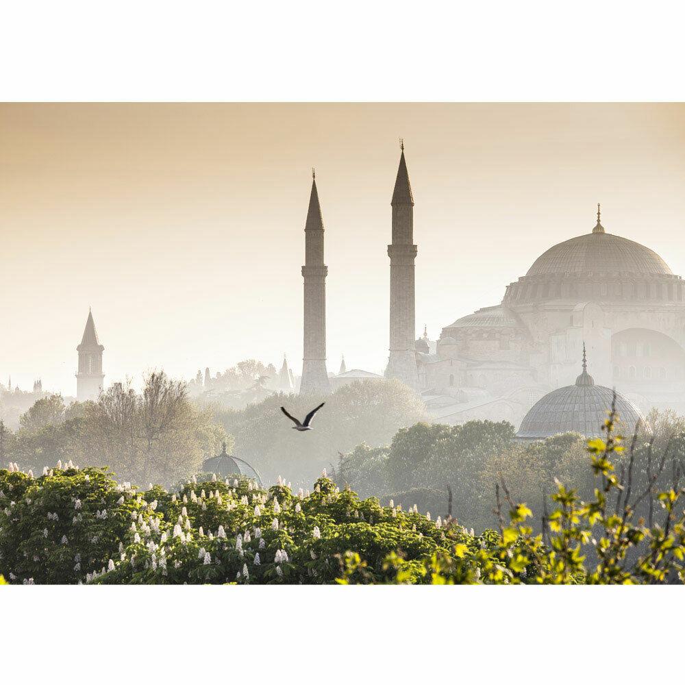 Papier Peint Photo Istanbul Mosquée Turquie Naturel Brouillard Liwwing Numéro