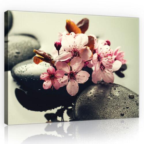 CANVAS Wandbild Leinwandbild Bild Stein Wasser Blume Blumen SPA Foto  3FX11408O6