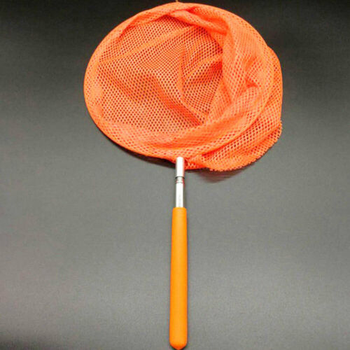 D9EE Telescopic Kids Extendable Insect Kids Extendable Butterfly Camp Net Fish