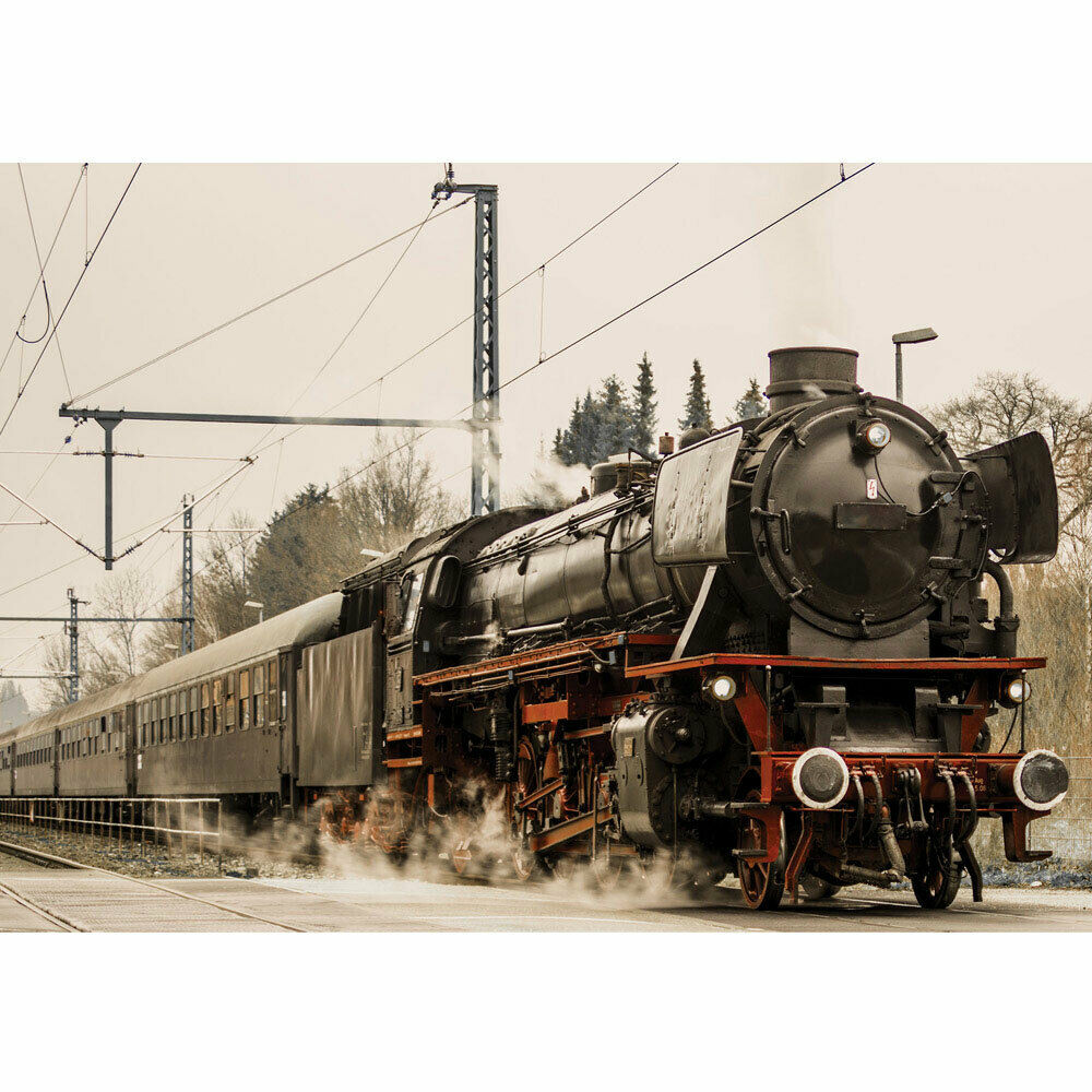 Foto Mural Locomotora Cable Transportmittel Bosque Viajes Liwwing N°4510
