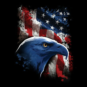 American-Flag-USA-Freedom-Eagle-United-States-Patriotic-4th-Of-July-T-Shirt-Tee