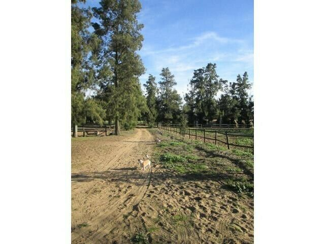 24 ha Equestrian Farm for Sale near Malmesbury-          RXVP-0212