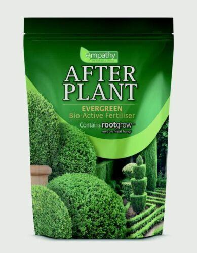 Empathie après plante arbres à Feuillage Persistant avec Rootgrow 1 kg-apeg 1000