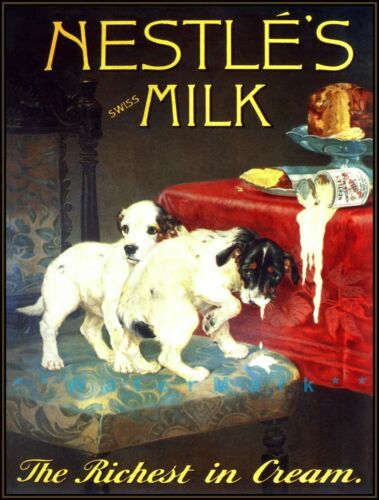 Nestles Milk Jack Russell Terrier Puppies Vintage Poster Print Rich Milk Cream