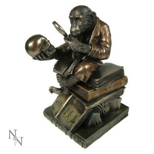Bronze-Darwin-Monkey-with-Skull-Figurine-Statue-Science-Room-Decor-Gift-17cm-ART