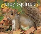 Grey Squirrels by G. G. Lake (Hardback, 2016)