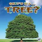 Tree by Tracy Maurer (Paperback / softback)
