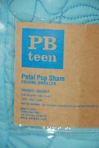 POTTERY BARN ~ WELLESLEY SHAMS IN EURO OR STANDARD ~ BEDDING ~ PB TEEN