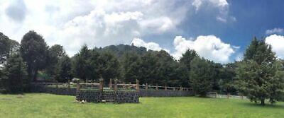 Rancho en Venta Ajusco CDMX