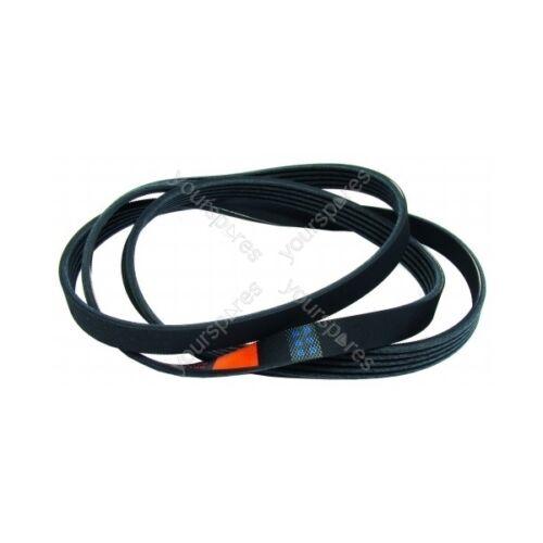 Hotpoint wt540p Poly Vee Lavatrice Cinghia di trasmissione CONSEGNA GRATUITA