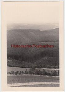 (f7091) Orig. Photo Tannroda Environnement, 1938-afficher Le Titre D'origine
