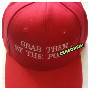 7c3c8c3d354 MAKE AMERICA GREAT AGAIN Parody Trump Red HAT Grab Them By The P ...