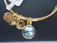 "Alex and Ani ""Bangle Bar"" March Birthstone Yellow-Gold Expandable Bracelet (A09EB242G) Jewelry"
