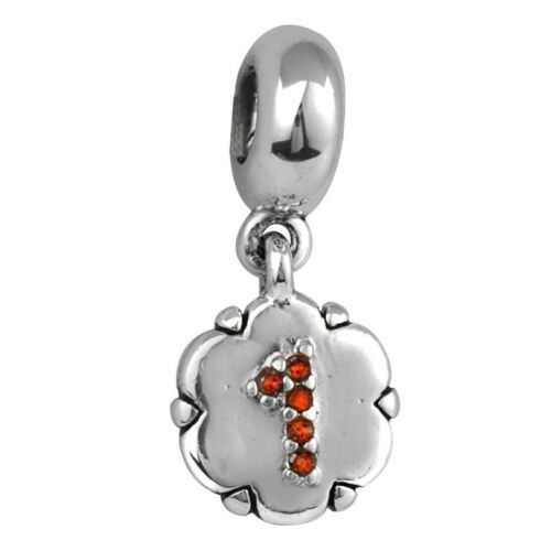 Hot Silver Charm European Beads Pendant Fit sterling 925 Bracelet Necklace Chain
