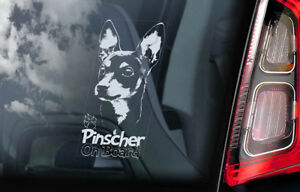 Pinscher-On-Board-Auto-Finestrino-Adesivo-Tedesco-Deutscher-Cane-Cartello