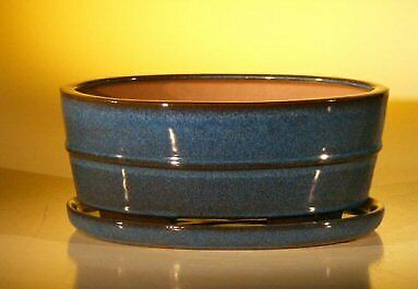 Oval Professional Series with Attached Humidity//Drip... Blue Ceramic Bonsai Pot