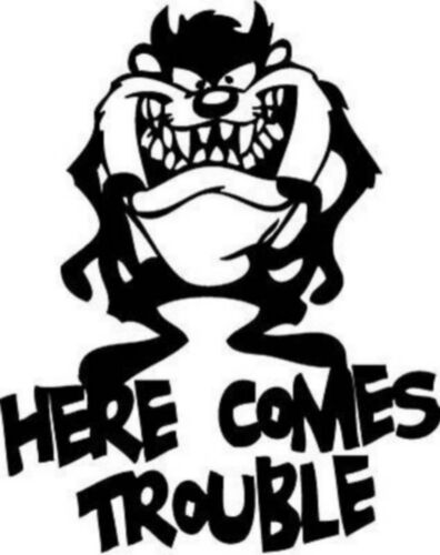 TAZMANIAN DEVILZ FUNNY  sticker vinyl decal for car and others FINISH GLOSSY