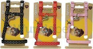 ROSEWOOD-OPTIONS-POLKA-DOT-ADJUSTABLE-GUINEA-PIG-WALKING-HARNESS-3-COLOURS-19336