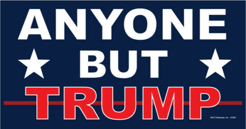 "4/"" x 8/"" ANYONE BUT TRUMP Political 2020 Car Magnet"