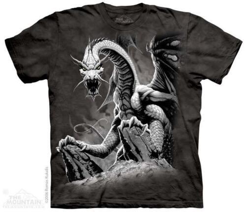 Black Dragon Perched Fantasy Art The Mountain T-Shirt 1252 All Sizes