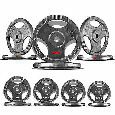 "1"" TRI-GRIP Cast Iron Disc Weight Plates EZ Bar Curl Barbell Weights Fitness Gym"