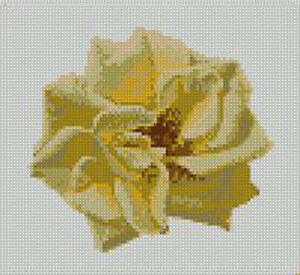 Yellow-Rose-Head-Counted-Cross-Stitch-Kit-6-75-034-x-6-5-034-17-8cm-x-16-5cm-F2220