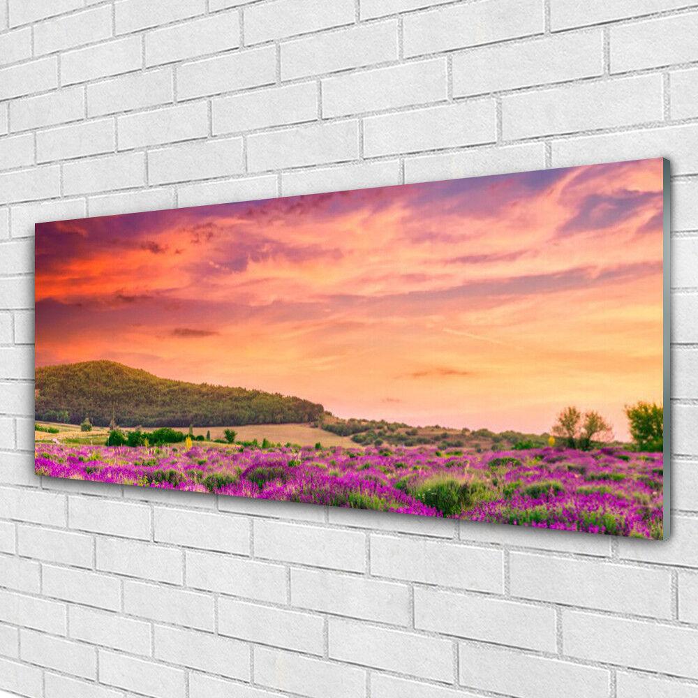 Impression sur verre Image tableaux 125x50 Paysage Prairie Fleurs