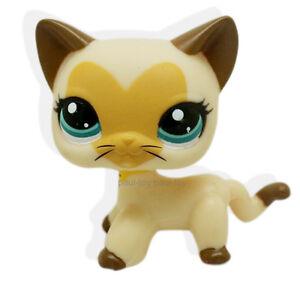 Littlest-Pet-Shop-RARE-Tan-Brown-Short-Hair-Cat-Heart-Face-Kitty-LPS-3573