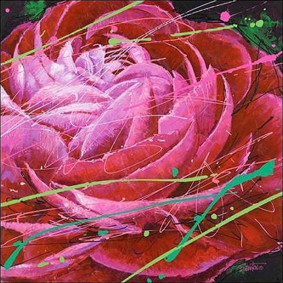 Bruce Langton  Ranunculus in Motion Keilrahmen-Bild Leinwand Blaumen modern rot