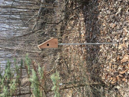 NEW DESIGN SONGBIRD SALTBOX BIRD HOUSE CHICKADEE CAROLINA WREN NUTHATCH CEDAR