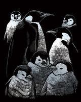 Engraving Scraperfoil Scratch Art Kit Silver Foil Engrave Penguins