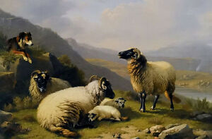 Oil-painting-eugene-verboeckhoven-sheep-dog-guarding-his-flock-sheep-by-river