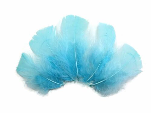 Pastel Mix Turkey T-Base Plumage Wholesale Feathers Craft Dream Catcher 1//4 Lb