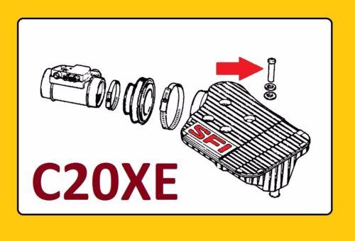 4 piezas Opel c20xe TORX tornillo SFI recuadro pernos m6 sustituto para Opel 836941