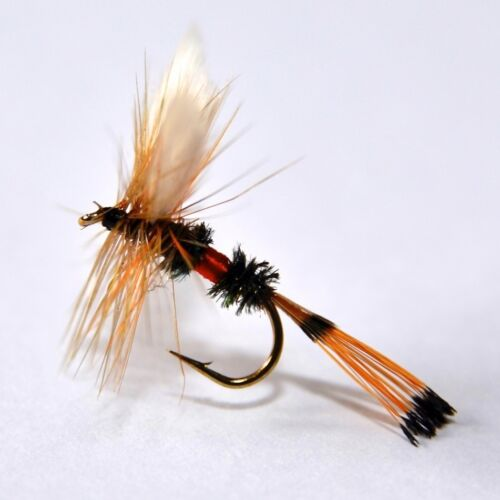 ROYAL COACHMAN Dry Trout /& Grayling fly Fishing flies by Dragonflies