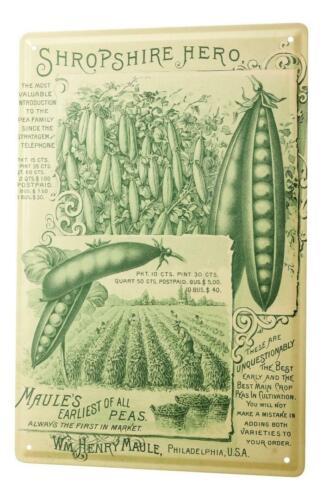 Tin Sign Nostalgic Fun Peas