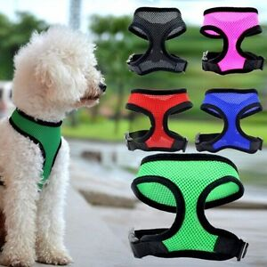 Pet-Control-Harness-for-Dog-Puppy-Cat-Soft-Walk-Collar-Safety-Strap-Mesh-Vest