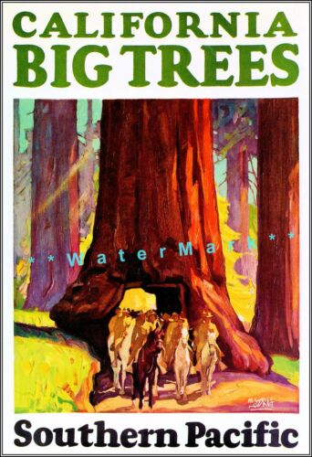 California Redwoods 1927 Big Trees Vintage Poster Print Southern Pacific Rail