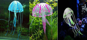 meduse-pour-aquarium-couleur-aux-choix