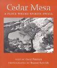Cedar Mesa: A Place Where Spirits Dwell by David Petersen, Branson Reynolds (Paperback, 2002)
