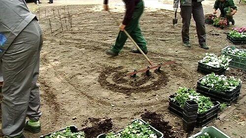 Rillenzieher Reihenzieher Furchenzieher 100 cm für Saatgut Saatkartoffeln
