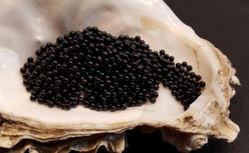 Wasserperlen schwarz Hydro Gel für Hydrokultur Water Pearls Gelkugeln