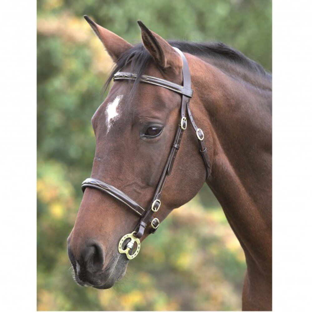Shires  Equestrian Fancy Stitched In Hand Bridle Havana  ultra-low prices