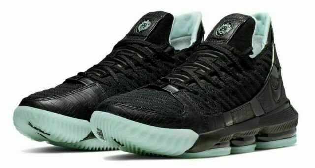 Nike LeBron XVI Basketball Shoes for