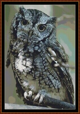 Naturalist John Audubon/'s Screech Owl Family  Counted Cross Stitch Chart Pattern