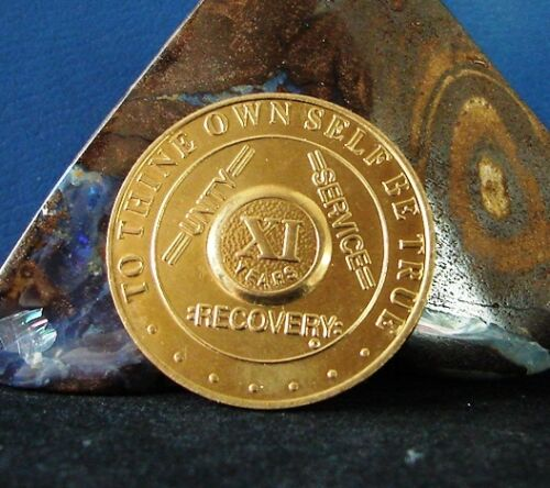 11 Year Gold Plated Unique Alcoholics Anonymous AA Medallion Coin Token Chip