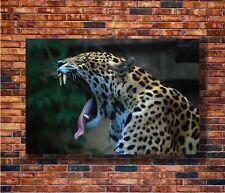 Leopard Yawning Africa Wild Animals Silk Poster 13x20 24x36 inch